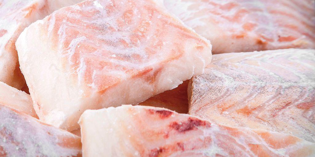 Come congelare il pesce fresco