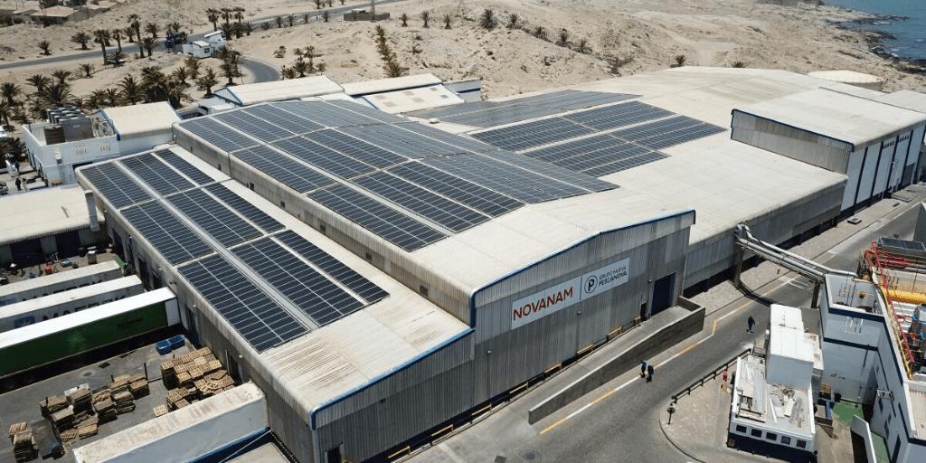 Pescanova e il fotovoltaico: inizia la transizione energetica